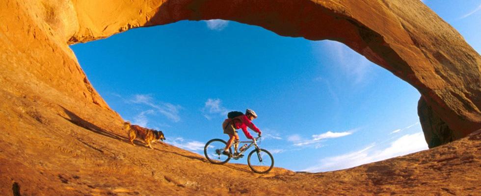 Seguro Bicicleta